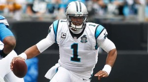 xCamNewton_2014_16.jpg,qitok=yPygX3Dy.pagespeed.ic.hOPKOgf_tV